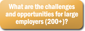 What are the challenges and opportunities for large employers 