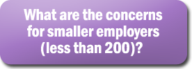 What are the concerns for smaller employers